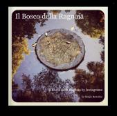 Il Bosco della Ragnaia: il mio terzo libro su blurb