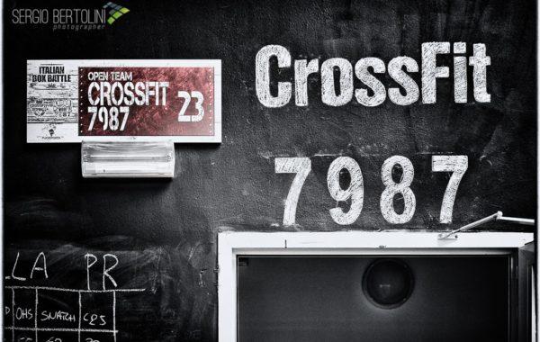 Servizio Box CrossFit 7987 1/3: Il Box
